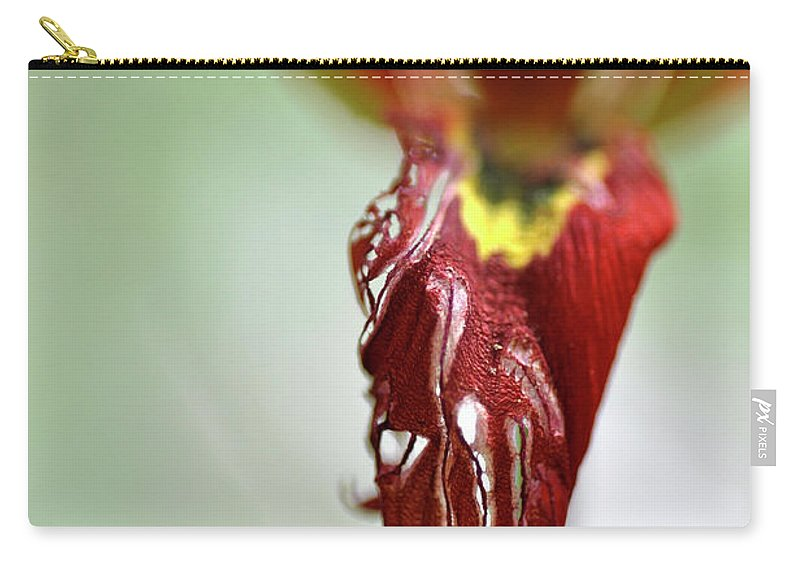 Lachish Carry-all Pouch featuring the photograph Tulip In Blossom 1 by Dubi Roman