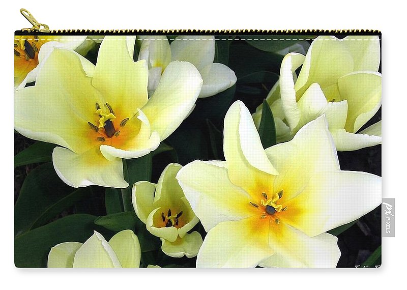 Agriculture Carry-all Pouch featuring the photograph Tulip Town 16 by Will Borden