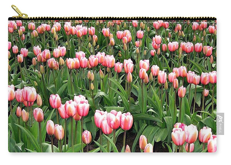 Agriculture Carry-all Pouch featuring the photograph Tulip Town 8 by Will Borden
