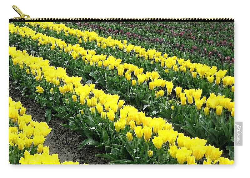 Agriculture Carry-all Pouch featuring the photograph Tulip Town 9 by Will Borden