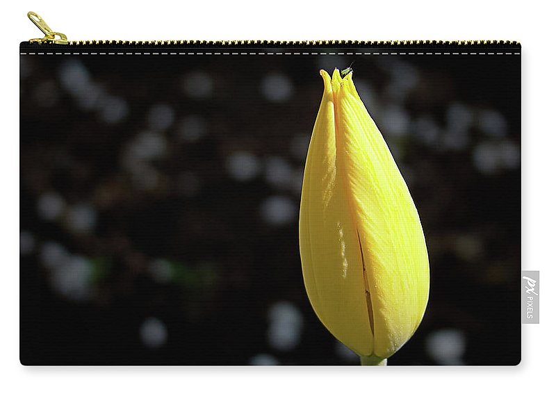 Bug Carry-all Pouch featuring the photograph Tulip With Guest by MotionOne Studios
