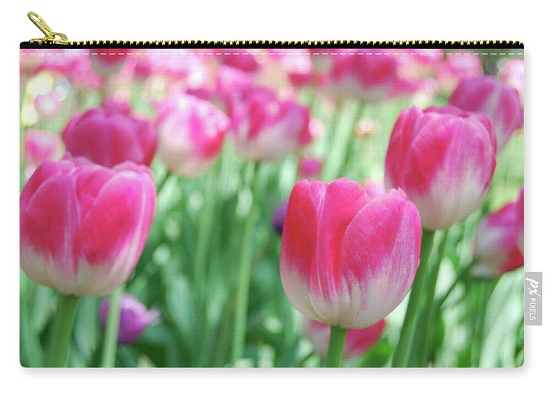 Flower Carry-all Pouch featuring the photograph Tulips 2 by Michael Peychich
