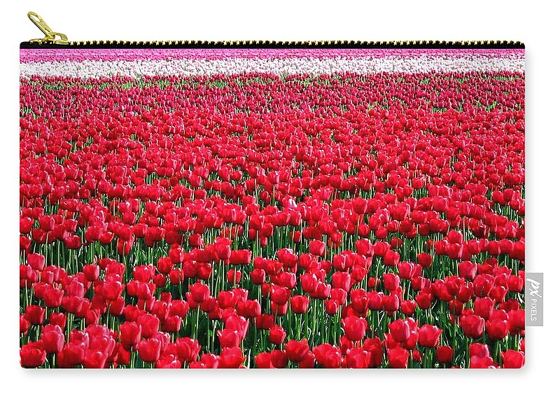 Tulips Carry-all Pouch featuring the photograph Tulips By The Million by Will Borden