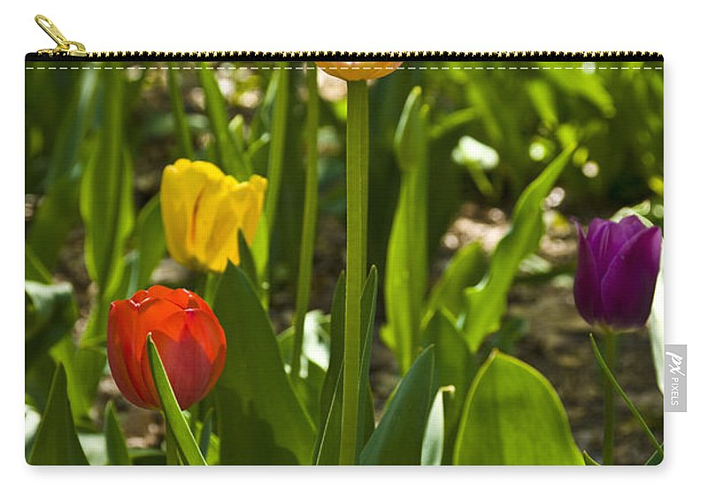 Spring Carry-all Pouch featuring the photograph Tulips In The Garden by Anthony Sacco