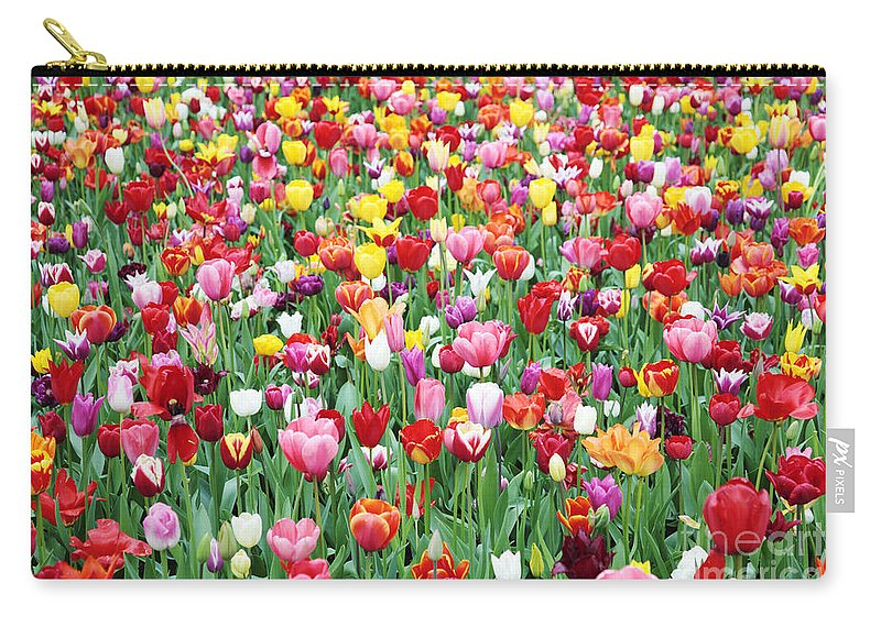 Tulips Carry-all Pouch featuring the photograph Tulips by Neil Overy