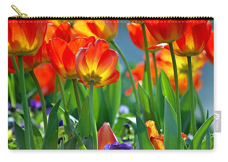 Flowers Carry-all Pouch featuring the photograph Tulips by Robert Meanor