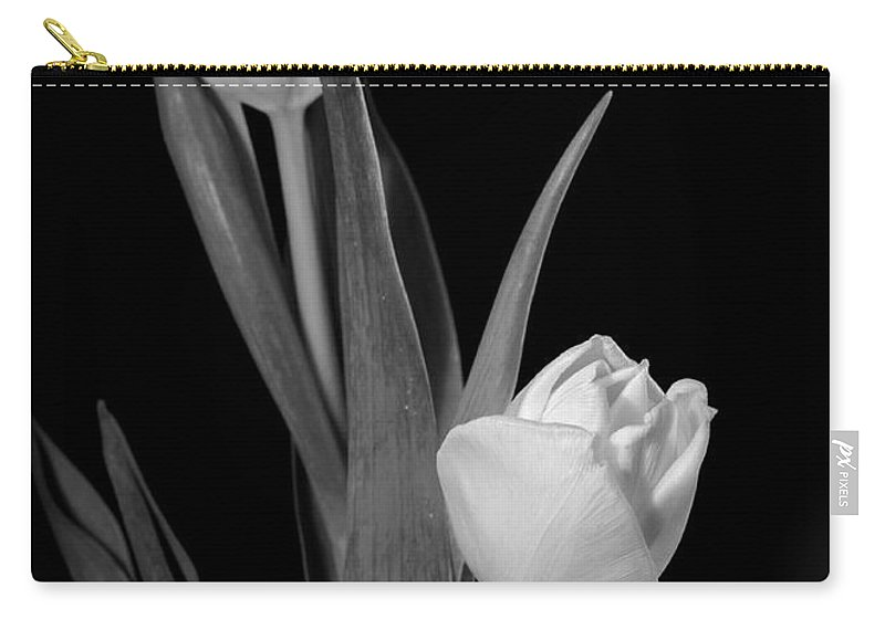 Tulip Carry-all Pouch featuring the photograph Tulips by Sharon Foster