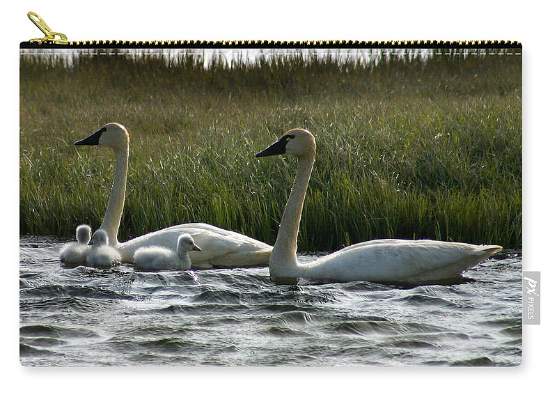 Swans Carry-all Pouch featuring the photograph Tundra Swans And Cygents by Anthony Jones