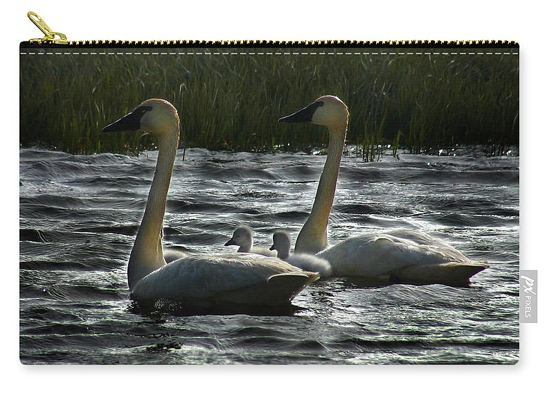 Tundra Swans Carry-all Pouch featuring the photograph Tundra Swans by Anthony Jones