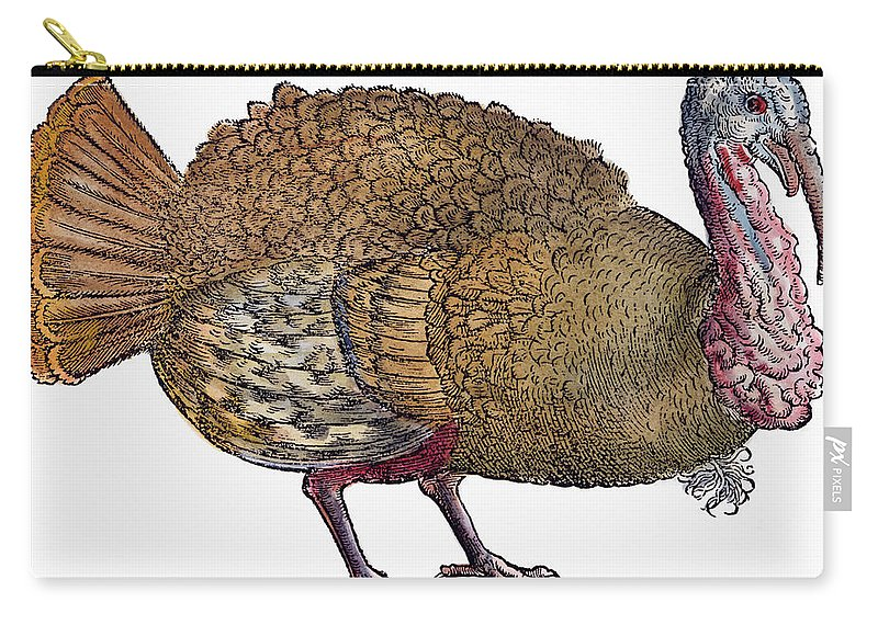 1560 Carry-all Pouch featuring the photograph Turkey, 1560 by Granger