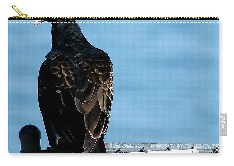 Clay Carry-all Pouch featuring the photograph Turkey Buzzard by Clayton Bruster