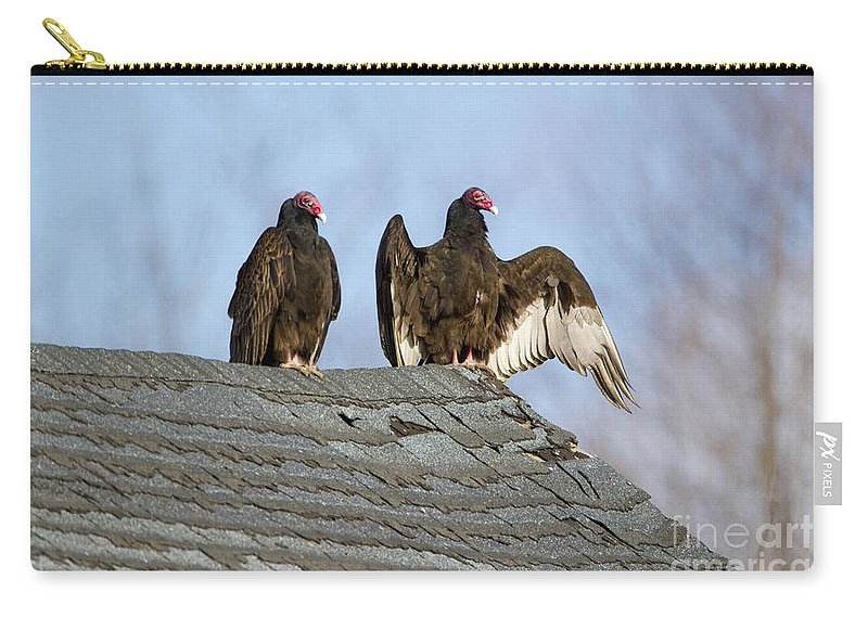 Turkey Vulture Carry-all Pouch featuring the photograph Turkey Vultures On Roof by Marie Read