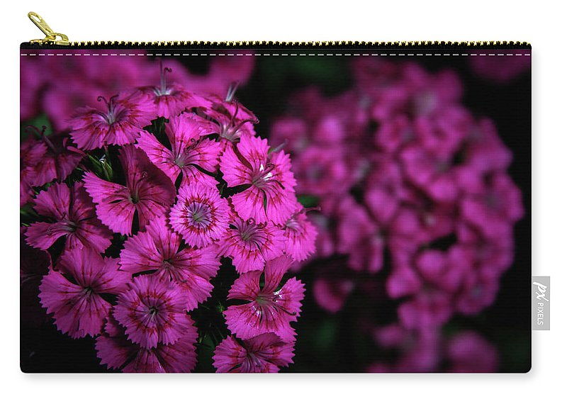 Turkish Carnation Carry-all Pouch featuring the photograph Turkish Carnation 5140 H_2 by Steven Ward