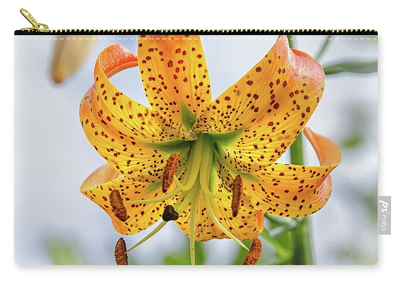 Blue Ridge Mountains Carry-all Pouch featuring the photograph Turk's Cap Lily by Kristina Plaas