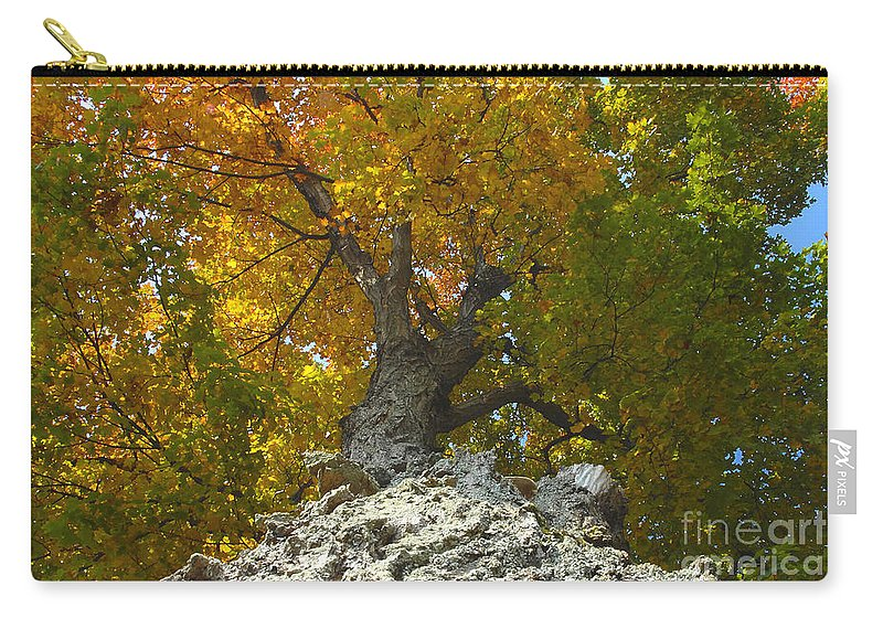 Fall Carry-all Pouch featuring the photograph Turning Colors by David Lee Thompson