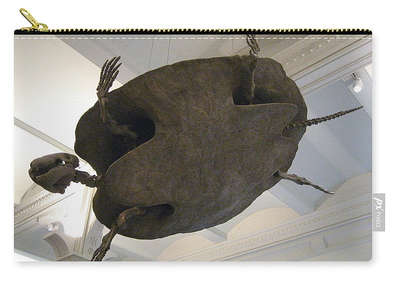Turtle Carry-all Pouch featuring the photograph Turtle by Brian McDunn