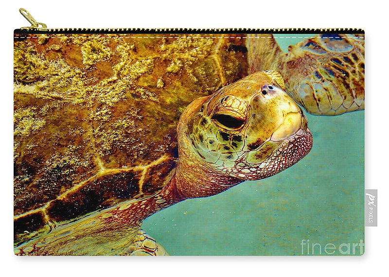 Turtle Carry-all Pouch featuring the photograph Turtle Life by Lisa Renee Ludlum