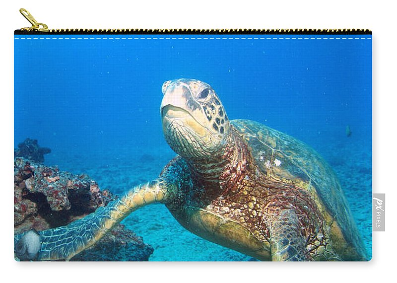 Carry-all Pouch featuring the photograph Turtle Portrait by Todd Hummel