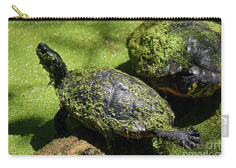 Turtle Yoga Carry-all Pouch featuring the photograph Turtle Yoga by William Tasker