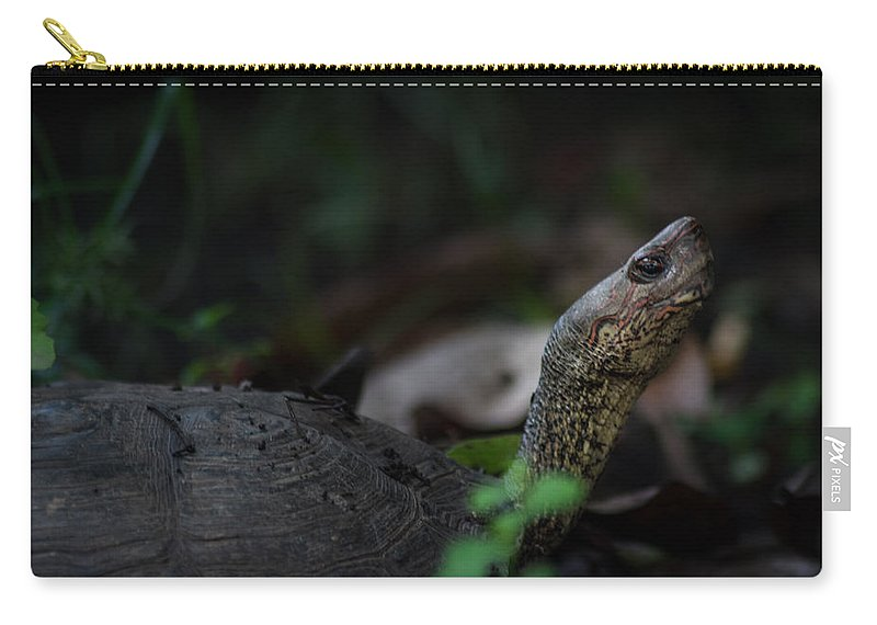 River Turtle Carry-all Pouch featuring the photograph Turtle's Neck 1 by Totto Ponce