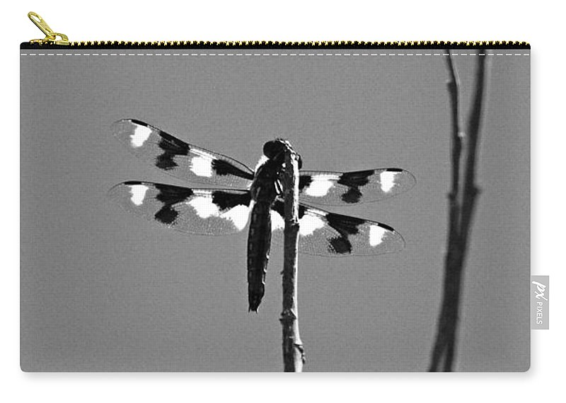 Dragonfly Carry-all Pouch featuring the photograph Twelve-spot Skimmer Dragonfly-bw by Katherine Nutt