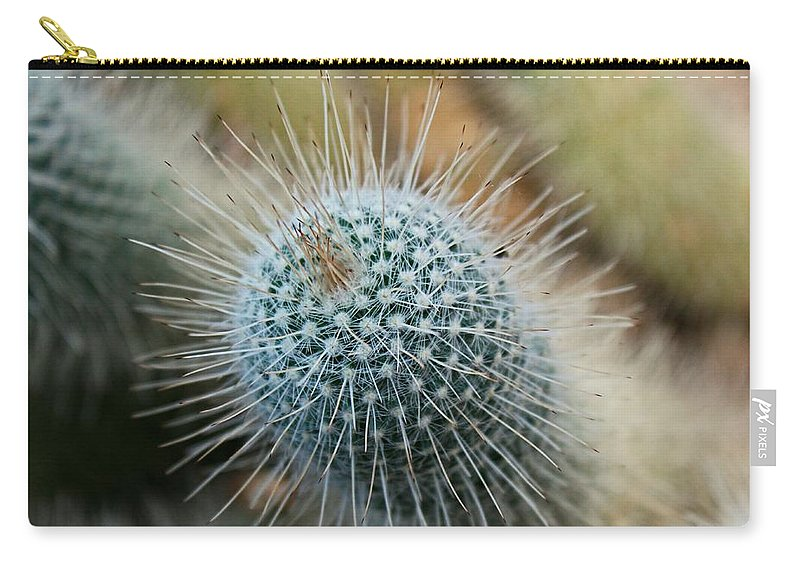 Twin Spined Carry-all Pouch featuring the photograph Twin Spined Cactus by Michiale Schneider