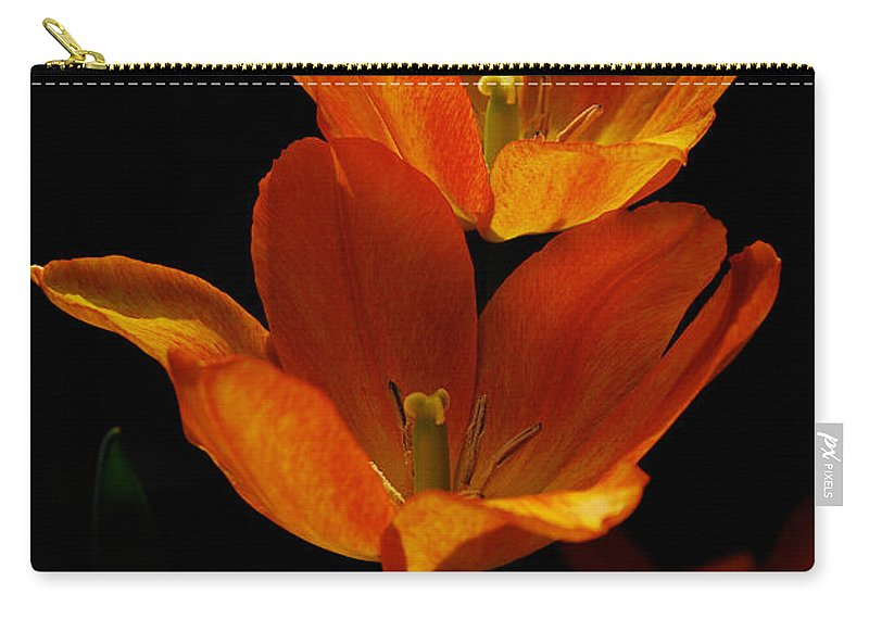 Lois Bryan Carry-all Pouch featuring the photograph Twins by Lois Bryan