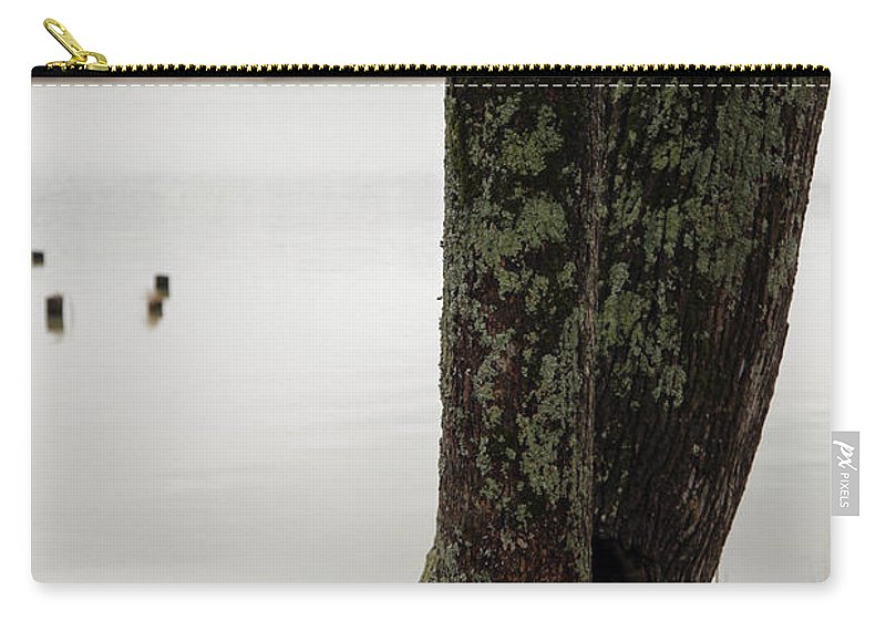 Tree Carry-all Pouch featuring the photograph Twist by Amanda Barcon