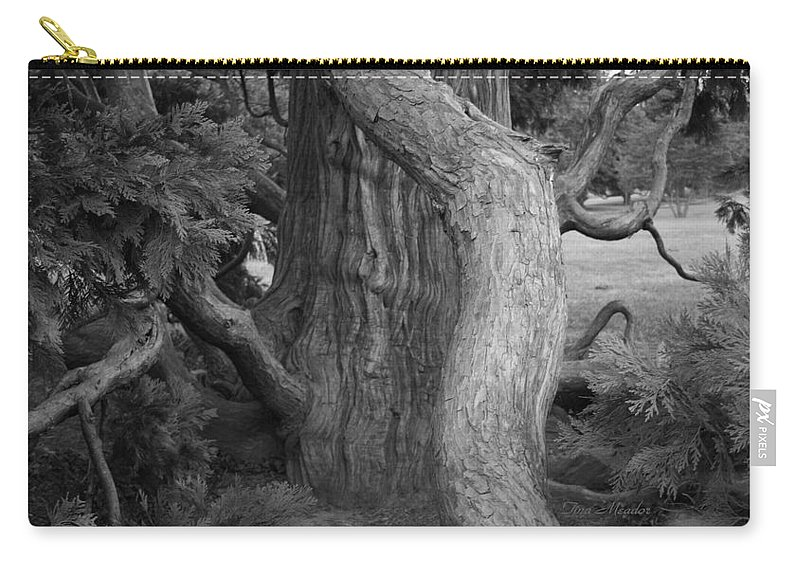 Tree Carry-all Pouch featuring the photograph Twisted Old Tree by Tina Meador