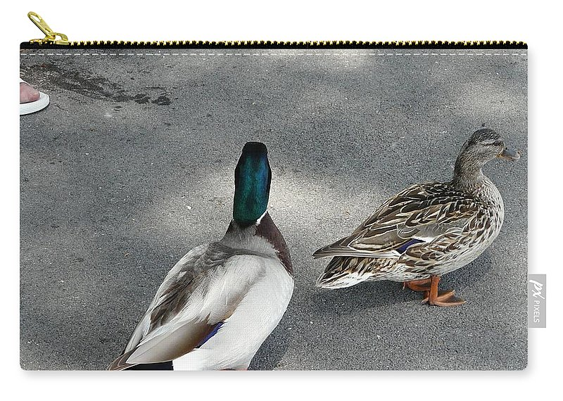 Bird Carry-all Pouch featuring the photograph Two And Two by Valerie Ornstein
