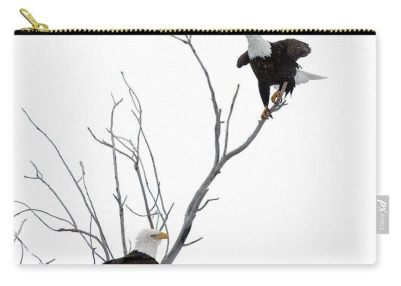 American Carry-all Pouch featuring the photograph Two Bald Eagles by Gary Langley