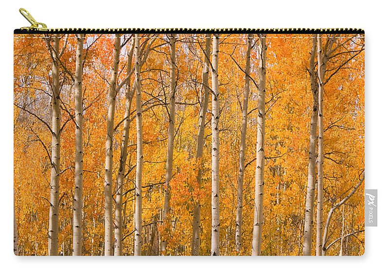Horse Carry-all Pouch featuring the photograph Two Colorado High Country Autumn Horses by James BO Insogna