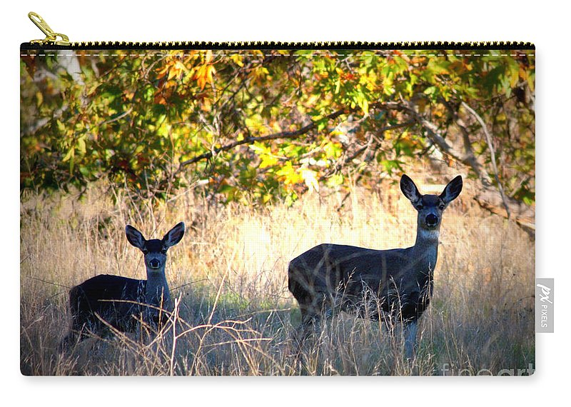 Animal Carry-all Pouch featuring the photograph Two Deer In Autumn Meadow by Carol Groenen