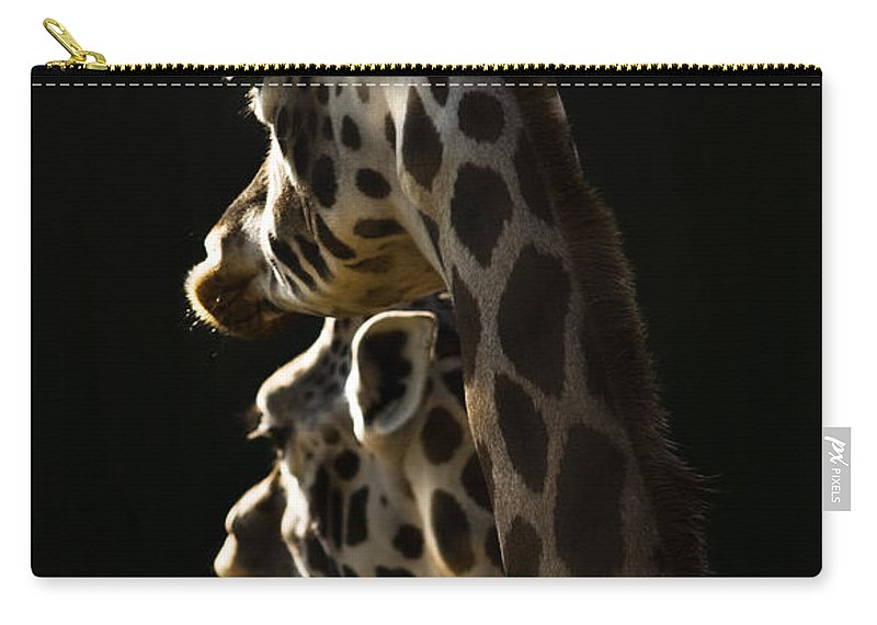 Giraffe Carry-all Pouch featuring the photograph Two Headed Giraffe by Angel Ciesniarska