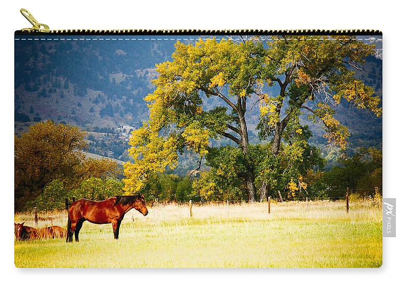 Animal Carry-all Pouch featuring the photograph Two Horses by Marilyn Hunt