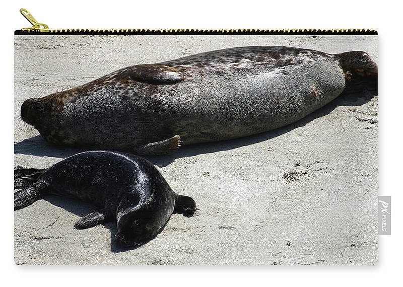 Seal Carry-all Pouch featuring the photograph Two Seals by Anthony Jones