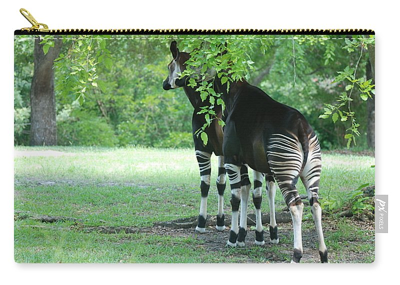 Animal Carry-all Pouch featuring the photograph Two Stripes by Rob Hans