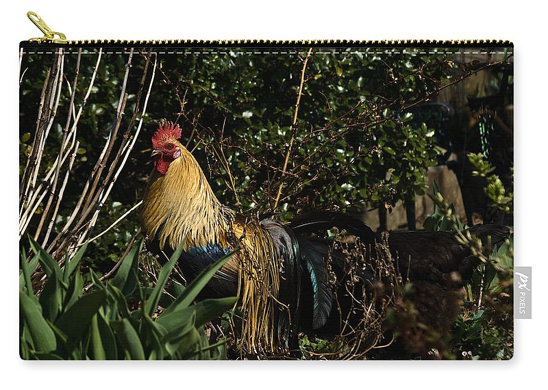 Rooster Carry-all Pouch featuring the photograph Uncle Rooster by Douglas Barnett