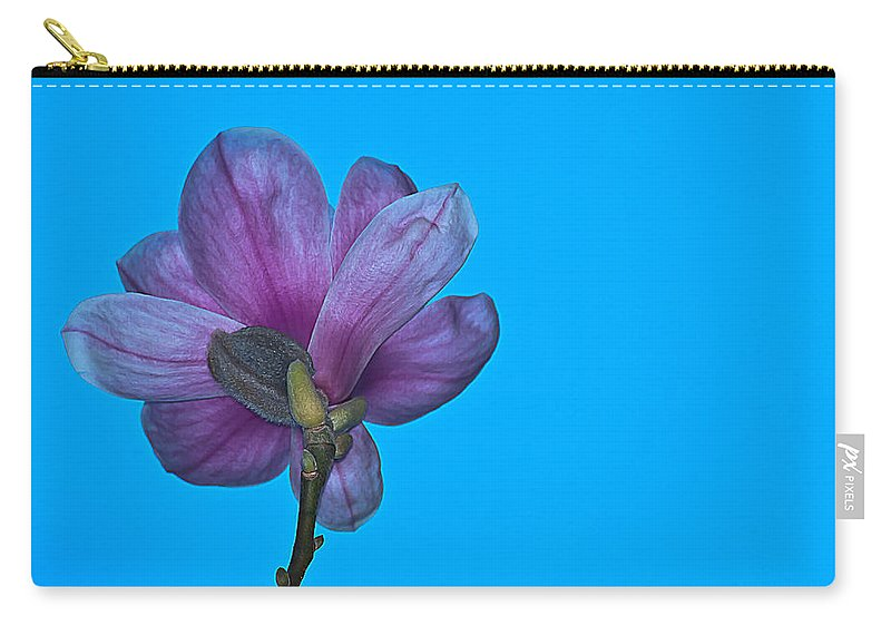 Floral Carry-all Pouch featuring the photograph Under Magnolia by Emerald Studio Photography