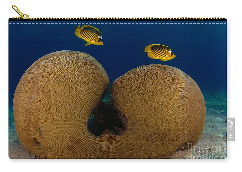 Diagonal Carry-all Pouch featuring the photograph Under The Sea by Hagai Nativ