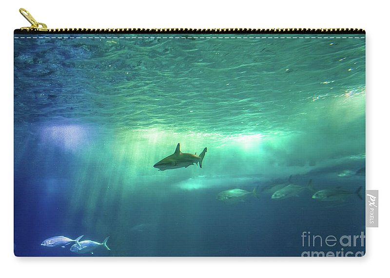 Underwater Carry-all Pouch featuring the photograph Undersea Scene Background by Benny Marty