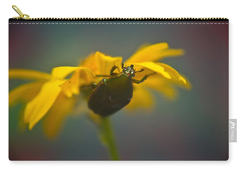 June Carry-all Pouch featuring the photograph Underside Of Daisy by Douglas Barnett