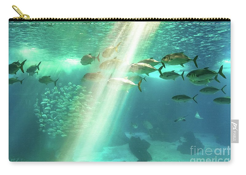Underwater Carry-all Pouch featuring the photograph Underwater Background With Sunbeams by Benny Marty