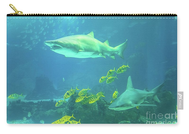 Underwater Carry-all Pouch featuring the photograph Underwater Shark Background by Benny Marty