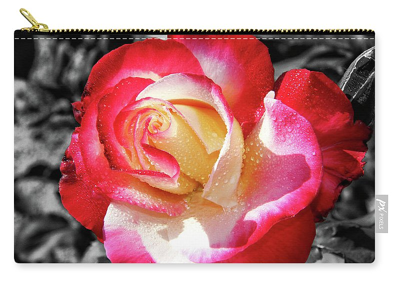 Unity Rose Carry-all Pouch featuring the photograph Unity Rose by Mariola Bitner
