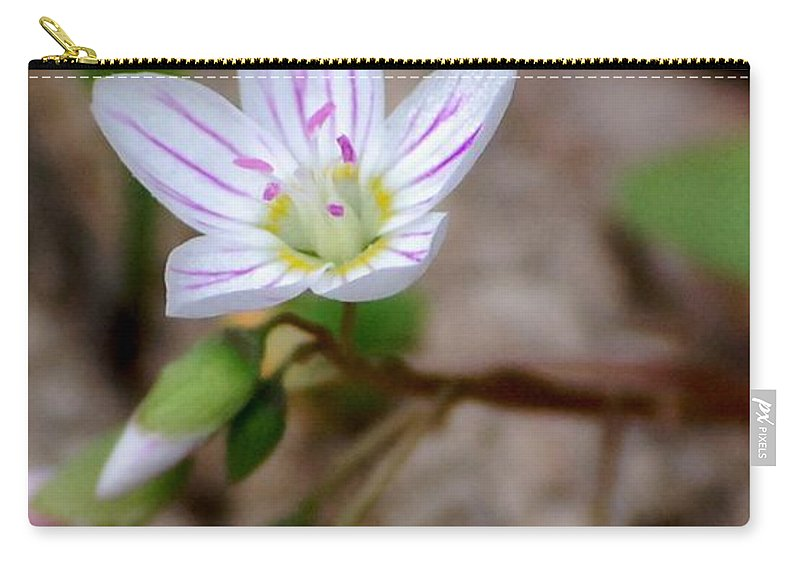Floral Carry-all Pouch featuring the photograph Untitiled Floral by David Lane