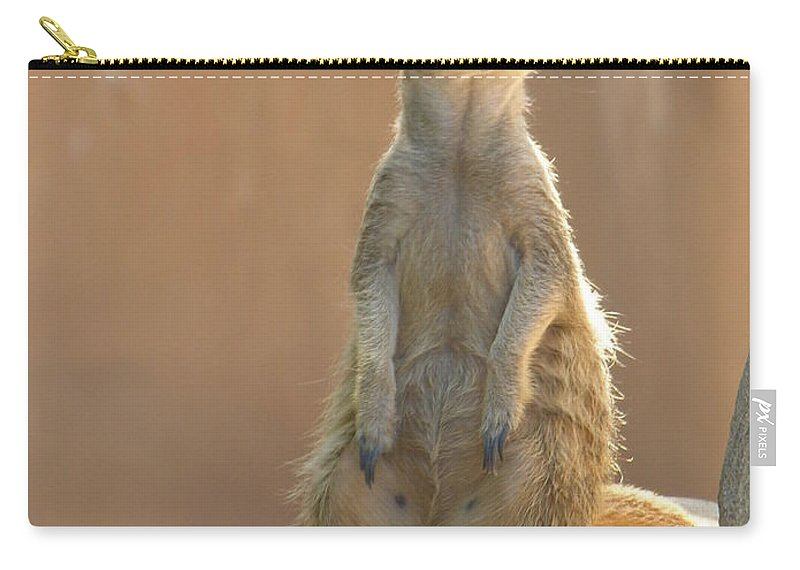 Animails Carry-all Pouch featuring the photograph Untitled by Diane Greco-Lesser