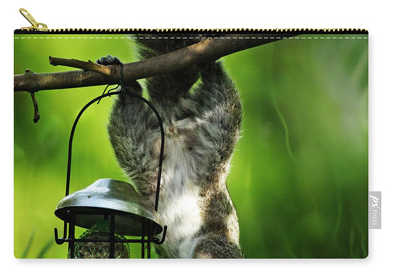 Squirrel Carry-all Pouch featuring the photograph Upside Down by Angel Ciesniarska