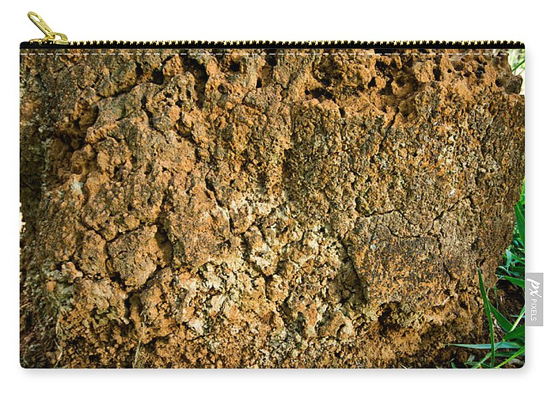 Urutu Carry-all Pouch featuring the photograph Urutu At Termite Mound by Dant� Fenolio