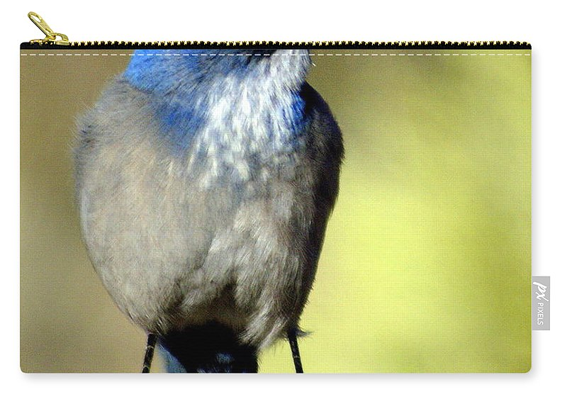 Birds Carry-all Pouch featuring the photograph Utah Bird by Marty Koch